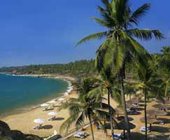 Package Tour To Kollam