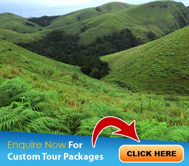 Kollam Tour Packages